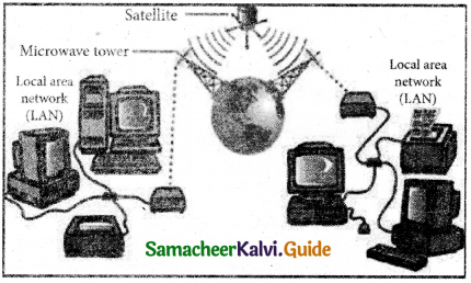 Samacheer Kalvi 11th Computer Applications Guide Chapter 9 Introduction to Internet and Email 5