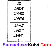 Samacheer Kalvi 7th Maths Solutions Term 3 Chapter 1 Number System 1.4 13