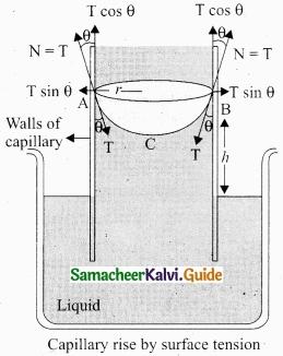 Tamil Nadu 11th Physics Model Question Paper 2 English Medium img 20