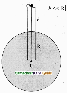 Tamil Nadu 11th Physics Model Question Paper 4 English Medium img 28