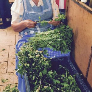 grandmother with her herbs at market in tepoztlan