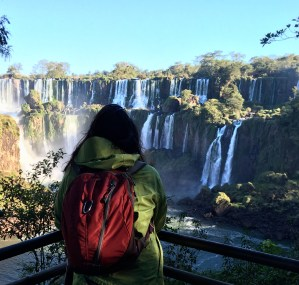 Taking in the majesty of the Iguazu Falls
