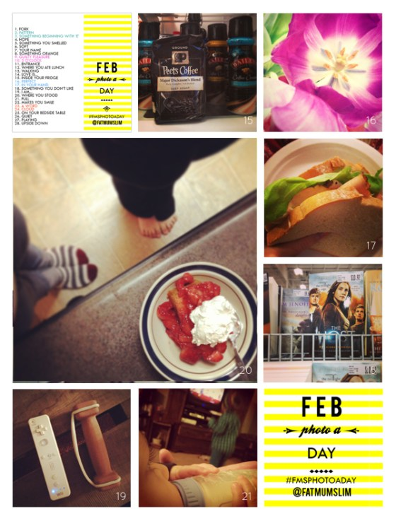 fmsphotoaday-february-2013-collage3