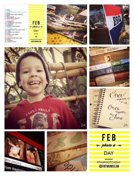 fmsphotoaday-february-2013-collage4