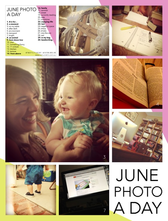 fmsphotoaday-june-2013-collage1