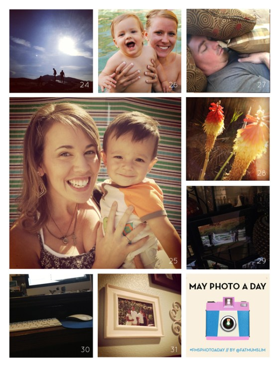 fmsphotoaday-may-2013-collage4