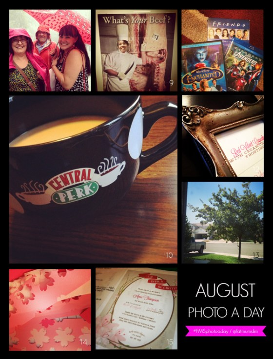 fmsphotoaday-august-2013-collage2