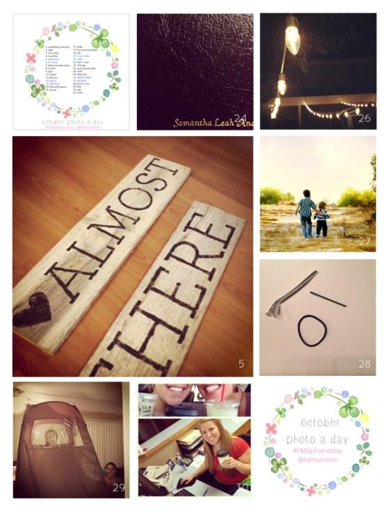 fmsphotoaday-oct-2013-collage4