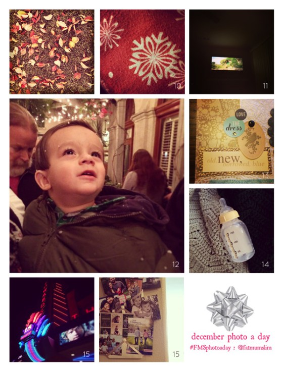 fmsphotoaday-dec-2013-collage2