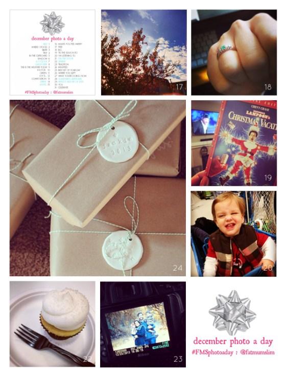 fmsphotoaday-dec-2013-collage3