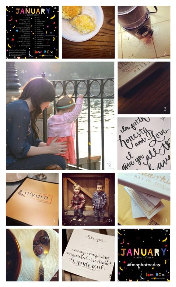 fmsphotoaday-jan-2014-collage1