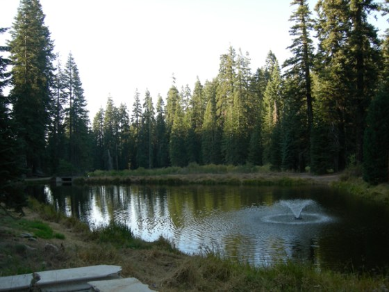 quaker meadow proposal 825