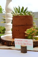 Shabby Chic Woodsy Baby Shower Cake Table Naked Chocolate Cake
