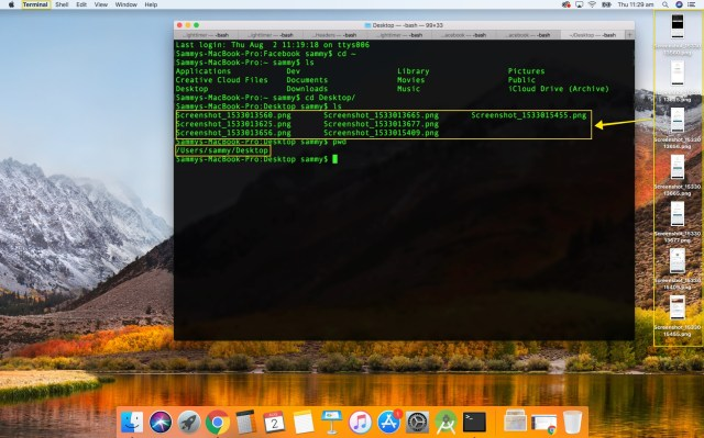 screenshot of a terminal session on macOS