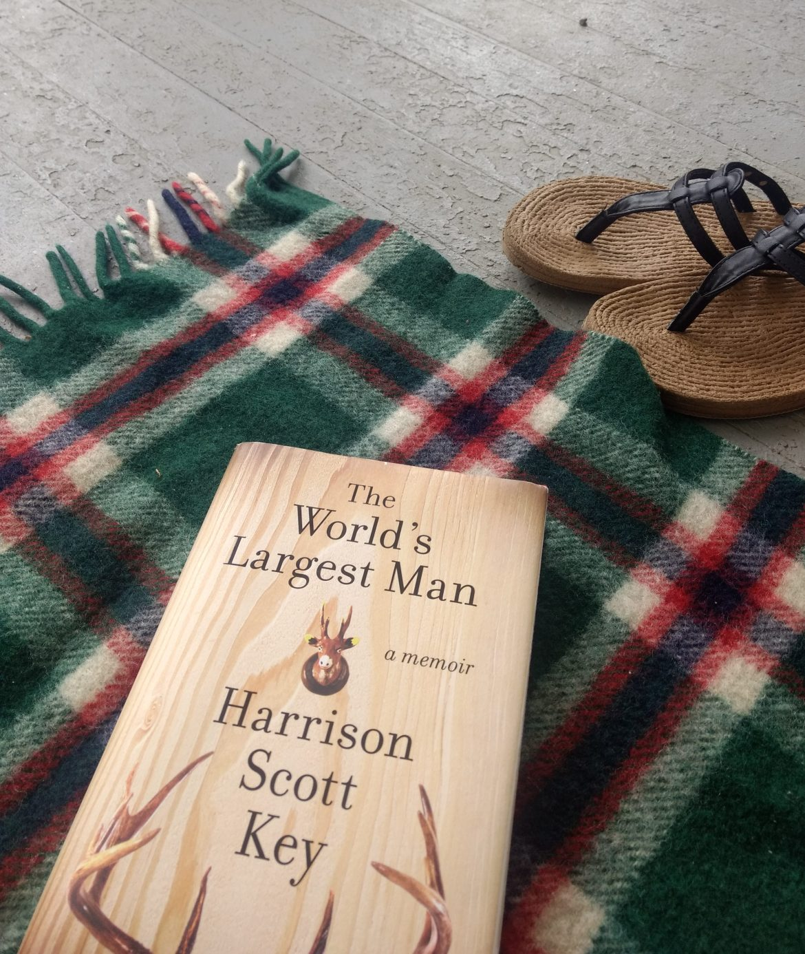 The Worlds Largest Man by Harrison Scott Key, on a blanket with sandals nearby