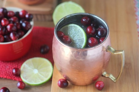 Cranberry-Lime-Moscow-Mules-2-1024x683