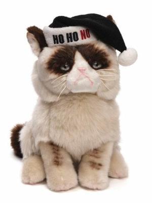 Grumpy Cat, Ho Ho No
