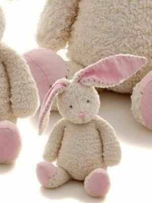 Fifi the Rabbit