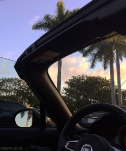 miami convertible view of palm trees