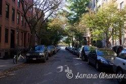 West Village, NY   © Samara Abramson