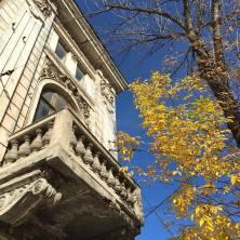 autumn-frunze