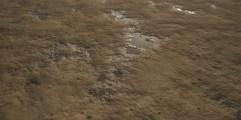 Muddy Dirt