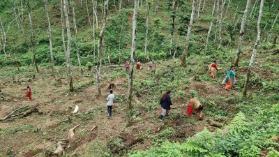 बाली बीमा कृषकमैत्री नभएको कृषकको गुनासो