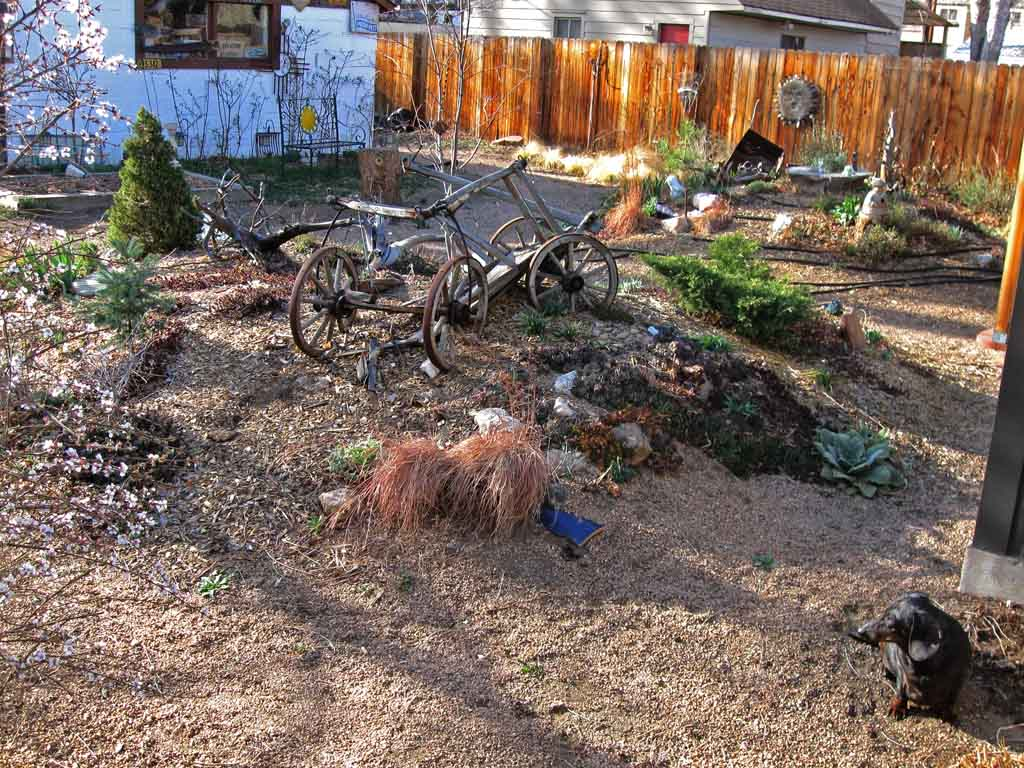 Wednesday afternoon - Backyard