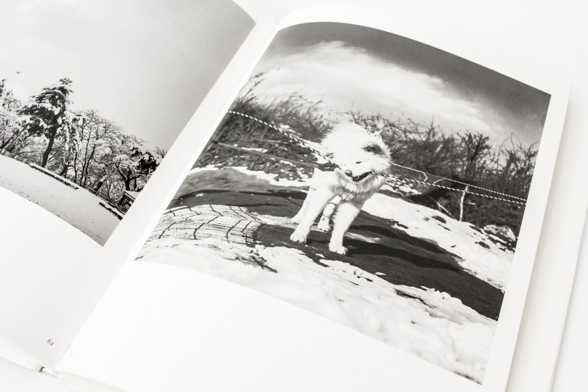 Japanese Photobooks from the Collection of Chris Harris, Part 2