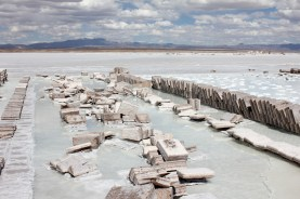Salt brick manufacturing