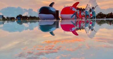 粉色虎鯨登場!安平虎鯨雙嬌夢幻「海之鏡」台南全新打卡點,加碼免費入園好康必看