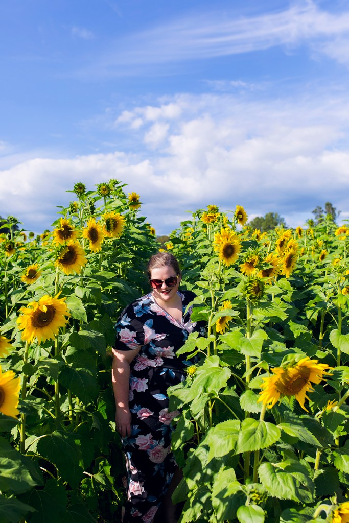 Fausett Farms Sunflower Field