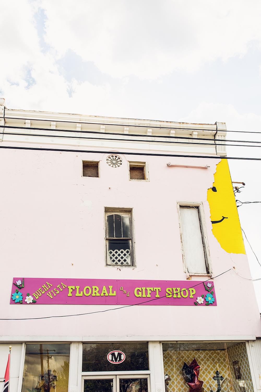 3 reasons why you need to visit Pasaquan_Buena Vista Georgia