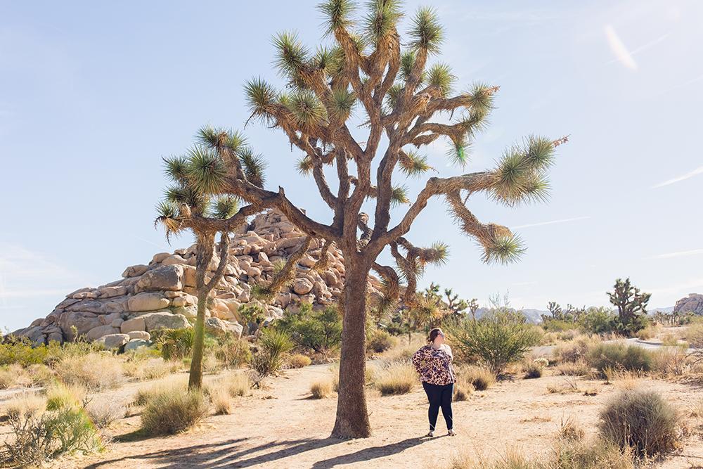 Spending a day in Joshua Tree, California!