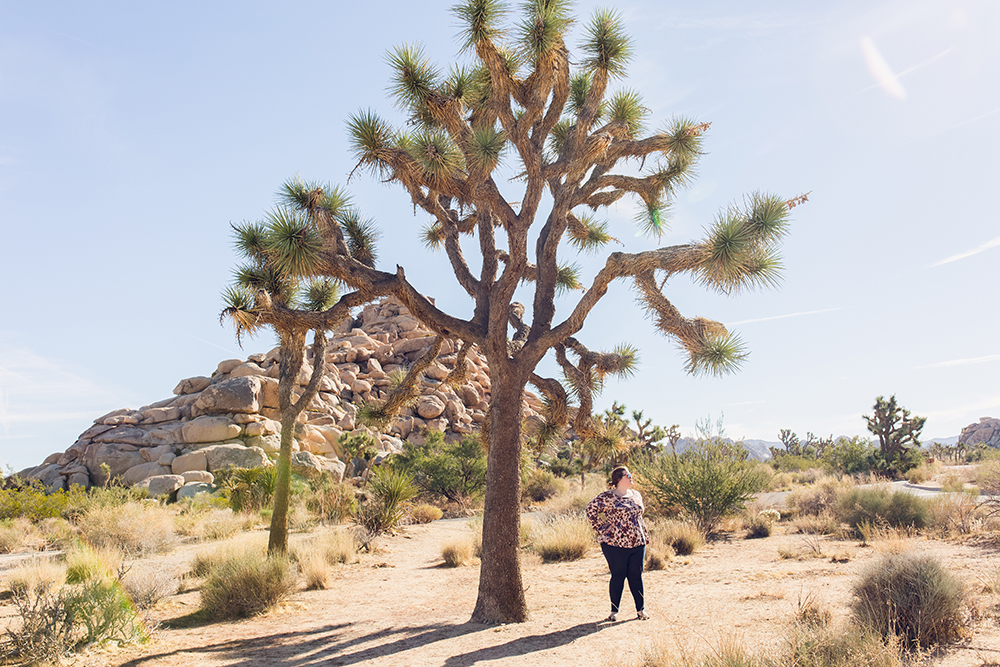 Spending a day in Joshua Tree, California!
