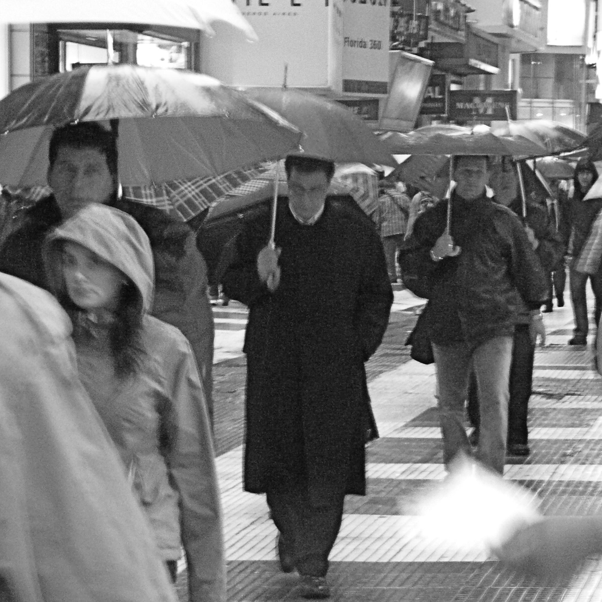 Raining Gatos Y Perros today