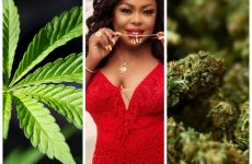 """Afia Schwarzenegger congratulates Gov't for legalizing """"wee"""" for health and Industrial purpose"""