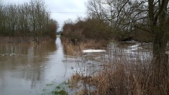 River Stour spilling into a field Nr Merley/Canford Magna
