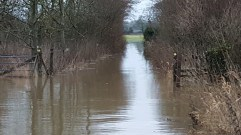Flooded pathways next to the River Stour Nr Merley/Canford Magna