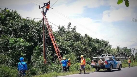 Cuaca ekstrem, dahan pohon ancam kelangsungan pasokan listrik
