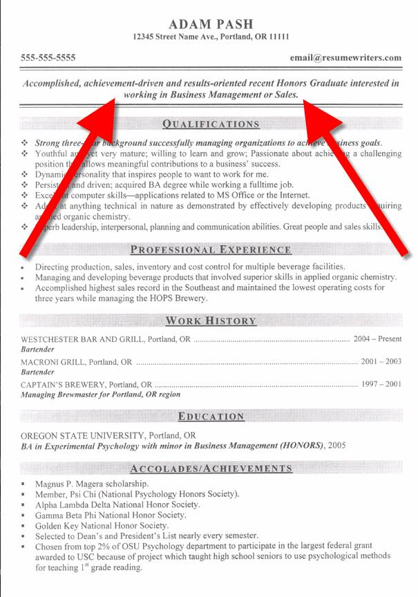 resume examples objectives examples general career objective