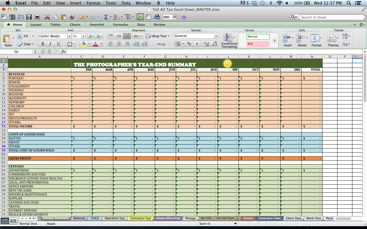 Photographer Income Expense Spreadsheet