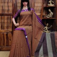 Bhuvana - Patteda Cotton Saree