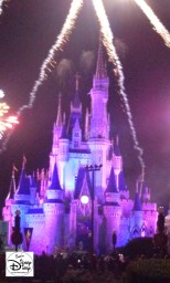 HalloWishes Lights up the night time sky at Mickey's No-So-Scary Halloween Party