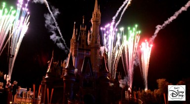 Sams Disney Diary 37 Celebrate The Magic (19)