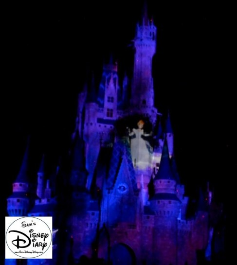 Sams Disney Diary 37 Celebrate The Magic (3)