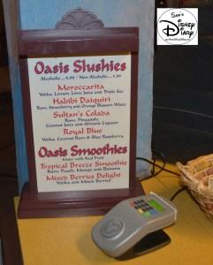 Sams Disney Diary Frozen Around World Showcase - Morocco - Oasis