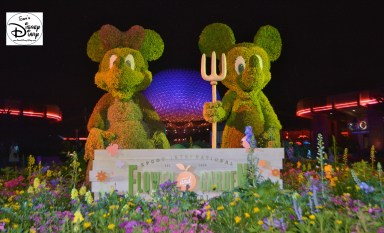Epcot Flower and Garden Festival - Mickey and Minnie