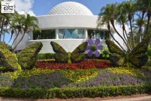 Epcot Flower and Garden Festival - Butterfly Blooms