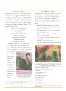Epcot Flower and Garden Festival 2017 - Walt Disney World Topiary Page 2